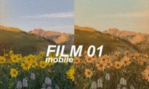 Alex Gowon - FILM 01 Mobile Preset