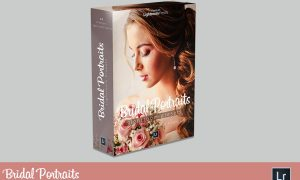 Bridal Portraits Lightroom Presets 3835044