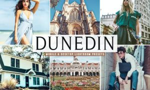 Dunedin Mobile & Desktop Lightroom Presets