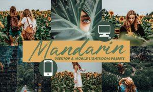Mobile Lightroom Presets MANDARIN 3116056