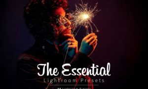 The Essential Lightroom Presets Pack 3950133