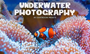Underwater Photography Presets 4725471