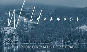 WILDRENESS || Cinematic Preset Pack 4570533