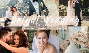 BRIGHT WEDDING - LUTs Pack 4934911