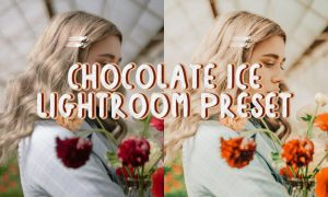 Chocolate Ice Lightroom Preset 4895163