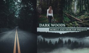 Cinematic Dark Woods Lightroom Presets 4222322