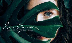 Evergreen Lightroom Presets   Bundle 4585358