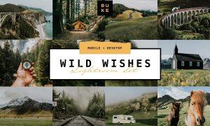 Wild Wishes – 6 Lightroom Presets 4876700