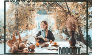 14 Moody Color Correction Bundle 4986197