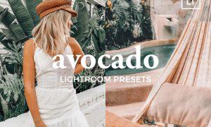 4 Lightroom Presets AVOCADO 4887234