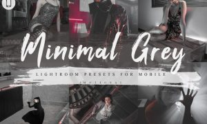 7 Minimal Grey Mobile Lightroom Presets 4231469
