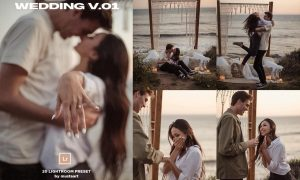 MustaART - 20 Wedding Preset V.01 4976216