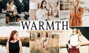 Warmth Mobile & Desktop Lightroom Presets