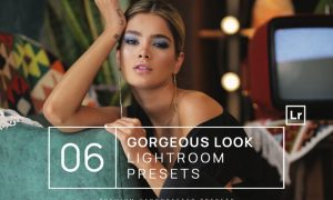 6 Gorgeous Look Lightroom Presets + Mobile