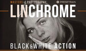 Linchrome Black & White Photoshop Action