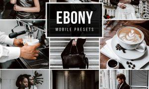 Mobile lightroom Presets EBONY 5025514