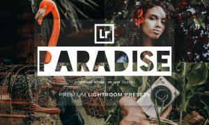 Paradise - Lightroom Presets 5215514