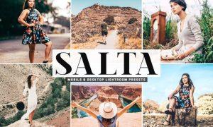 Salta Mobile & Desktop Lightroom Presets