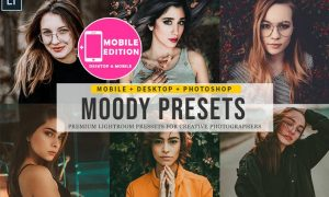 Moody Lightroom Presets EN8JCR3