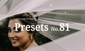 10 Wedding Lightroom Presets 5362551