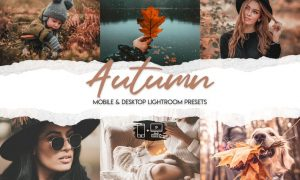Autumn Lightroom Presets