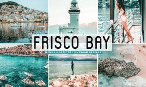 Frisco Bay Mobile & Desktop Lightroom Presets
