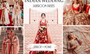 Indian Wedding Lightroom Presets