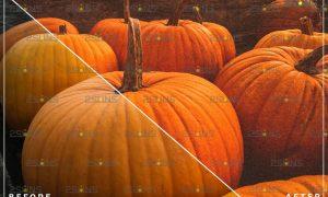 5 Halloween presets & Horror Lightroom presets