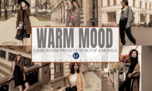6 Warm Mood Lightroom Desktop and Mobile 5930796