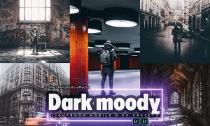 Dark Tones Lightroom Mobile & PC Presets
