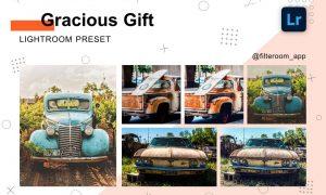 Gracious Gift - Lightroom Presets 5238843