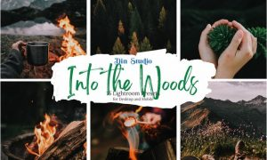 Into the Woods Lightroom Presets