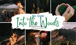 Into The Woods Lightroom Presets 5481883