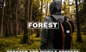 Lightroom Presets Dark Tones Forest 6178035