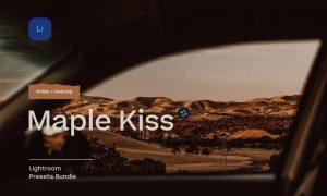 Maple Kiss – 5 Lightroom Presets 5483907