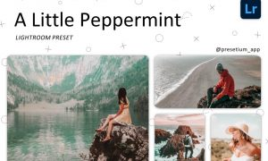 Peppermint - Lightroom Presets 5227517