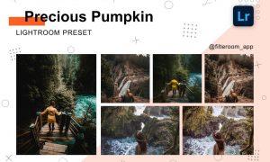 Precious Pumpkin - Lightroom Presets 5238840