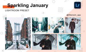 Sparkling January Lightroom Presets 5239699