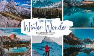 Winter Wonder Lightroom Presets