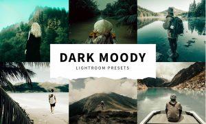 10 Dark Moody Lightroom Presets 5516122