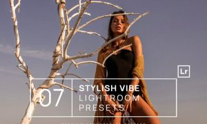 7 Stylish Vibe Lightroom Presets + Mobile