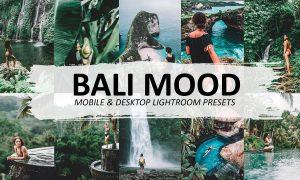 Bali Mood Lightroom Preset 5570074