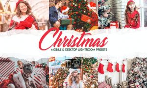 Christmas - 15 Premium Lightroom Presets