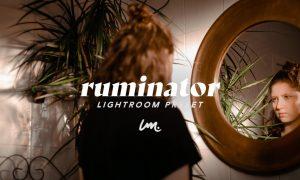 RUMINATOR | Lightroom Preset 5529989