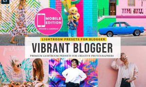 Vibrant Blogger Lightroom Presets