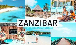 Zanzibar Mobile & Desktop Lightroom Presets