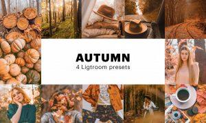 4 Autumn Lightroom Presets 5627655