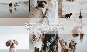 5 Moody Pet Lightroom Presets 5698951