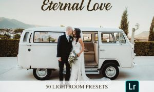 Lightroom Presets - Eternal Love 4821631