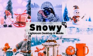 Snowy Time Lightroom Presets